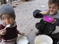 SRD Signs Letter Requesting Siege Lift, Humanitarian Access in Yarmouk